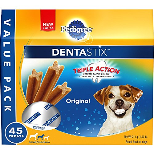 Can Dogs Get Dentures